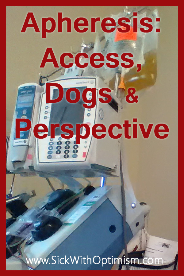 Apheresis: Access, Dogs and Perspective image of apheresis centrifuge machine with IV drip attached